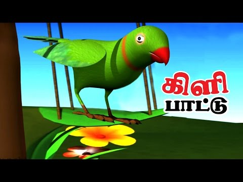 PARROT   Nursery Rhymes With Lyrics For Kids   Bird Rhymes in Tamil   Rhymes 3D Animation