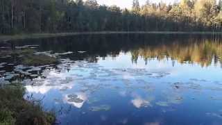 Visit to Nuuksio National Park in Finland   ParisRio Travel Channel