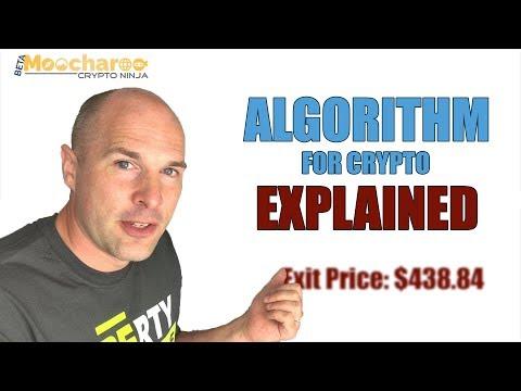 Crypto Ninja Algorithm Explained - Is It A Scam?