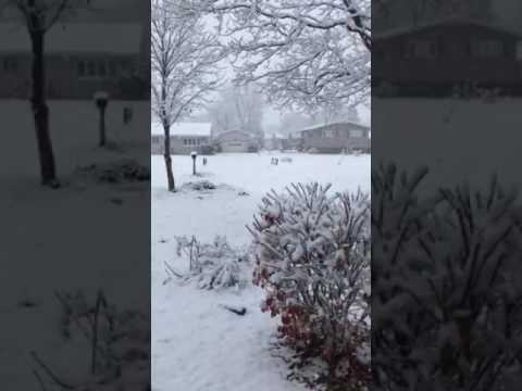 Snow in Morris, Illinois