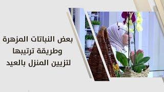 أمل القيمري - بعض النباتات المزهرة وطريقة ترتيبها لتزيين المنزل بالعيد
