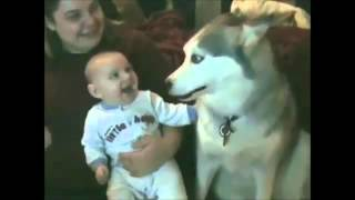 اجمل ردود فعل لأطفال مع الكلاب