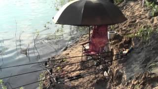 Рыбалка в ПИРОГОВКЕ Июнь 2015 Астраханская обл.(, 2015-07-06T04:26:20.000Z)