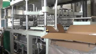 Fully Automatic Paper Pulp Molding Disposable Tableware Making Machine