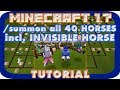 ☿ Minecraft TUTORIAL Horses All 40 Types Breeds Invisible Horse /summon command Donkey Mule