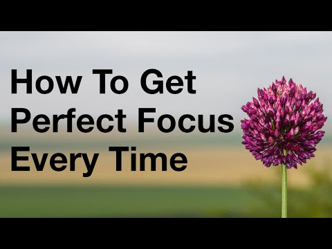 How To Get Perfect Focus On Your Camera Every Time thumbnail
