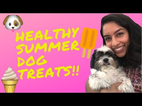 healthy-summer-dog-treats