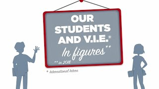 Our students and V.I.E. in figures