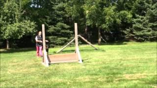 Bentley (doberman Pinscher) Boot Camp Dog Training Video