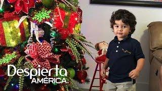 Orlando Segura le pone pone un arbolito de Navidad a baby Joshua