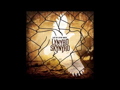 Lynyrd skynyrd  - Something to live for