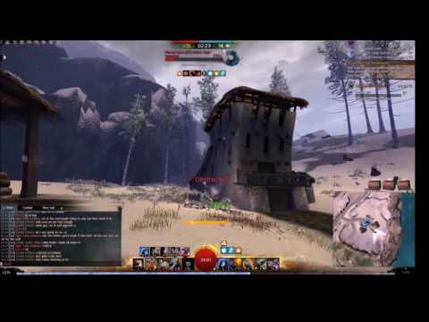 WVW Celestial Rifle Flamethrower Roaming Build