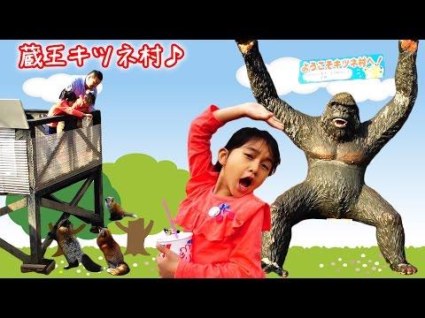2017GW家族でおでかけ☆キツネの動物園「蔵王キツネ村」で山羊に囲まれたww Fox Village in Japan 'Zao Kitsune Mura' himawari-CH