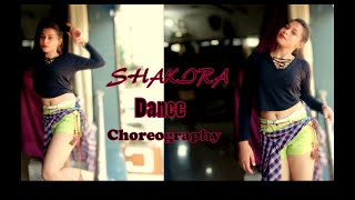 Shakira welcome to Karachi | solo |Dance Choreography|