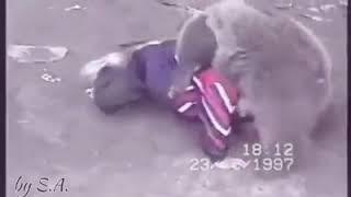 Khabib Fighting a Bear