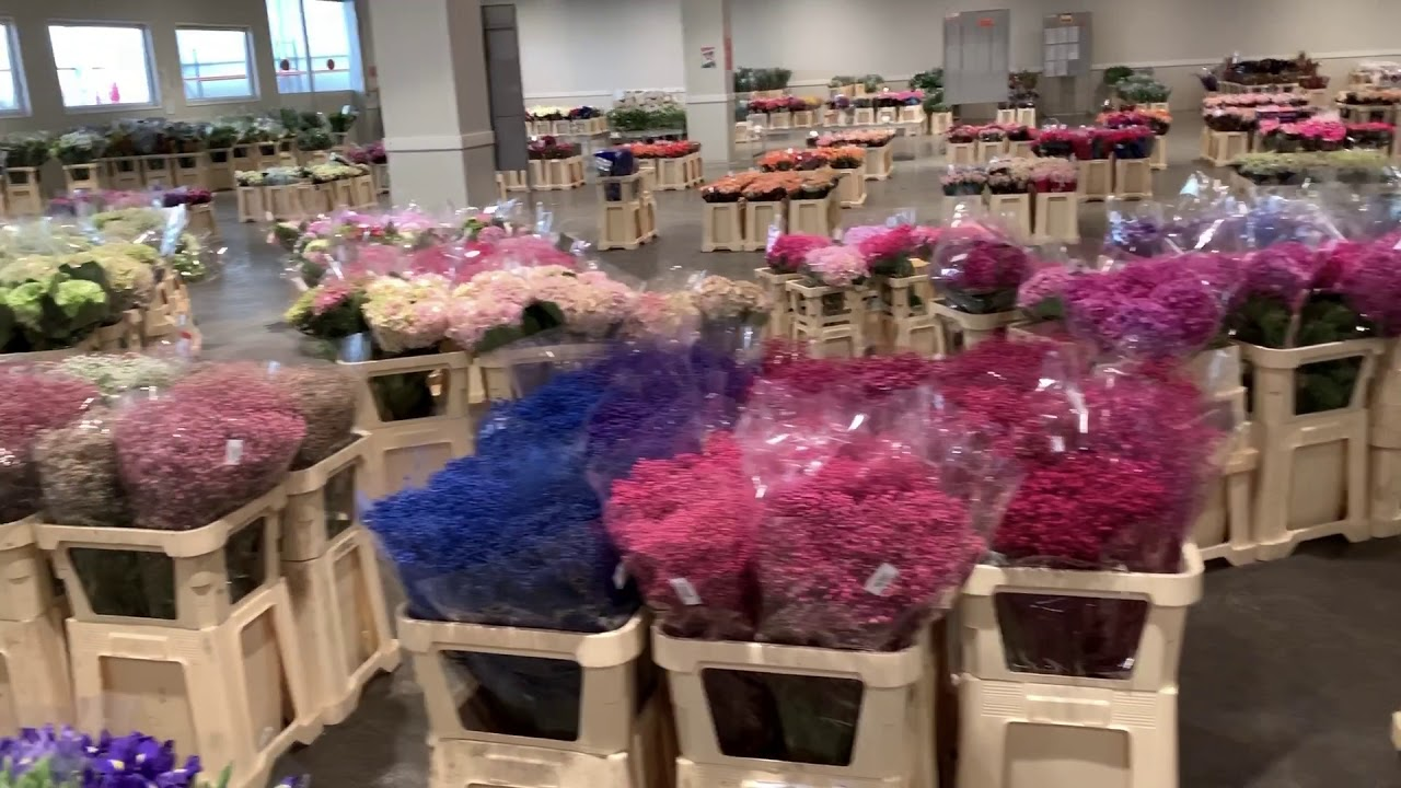 Срезанные цветы опт киев, доставка