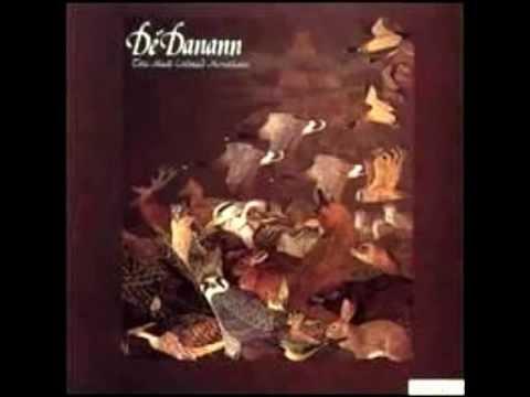 De Danann - The Cottage in the Grove , Sean Ryans Reel