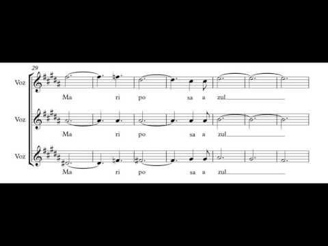 Panambí Johvé - Aca Seca Trío (Transcripción)
