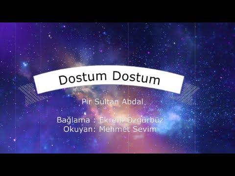 Dostum Dostum - Pir Sultan Abdal / Ekrem Özgürbüz & Mehmet Sevim