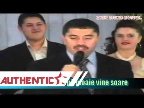 NICOLAE GUTA - DUPA PLOAIE, VINE SOARE, ZOOM STUDIO