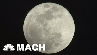 How The Pink Moon Got Its Name | Mach