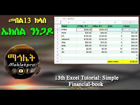 መበል 13ተ ክፋል Excel ን ነጋዶ   13th Excel class simple Financial-book