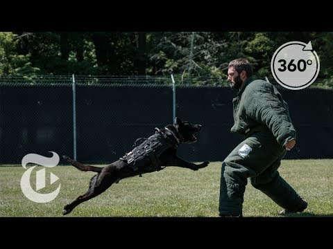 How to Become a Secret Service Agent | The Daily 360 | The New York Times