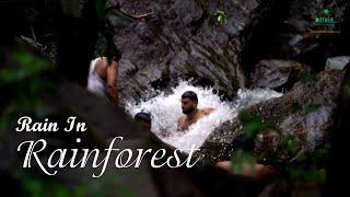 Palaruvi Waterfalls - Chasing the Monsoon at the Falls