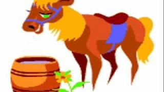 Animals Video.  Farm Animals.  Farm Activities