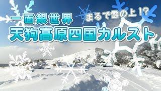 一面銀世界!冬の四国カルスト天狗高原