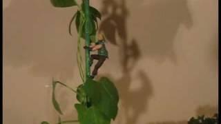 Jack and the BeanStalk - Bio Diorama