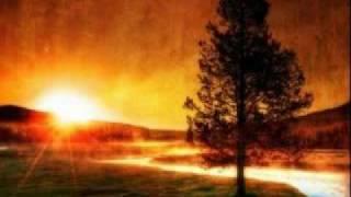 Vector Burn - Orchid (Mav remix)