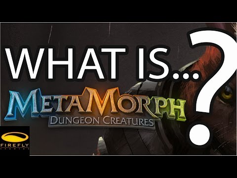 What is MetaMorph?