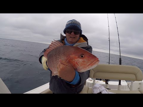 Destin, Florida Feb 2020 Cold Day With Great Fishing A Few Miles Offshore