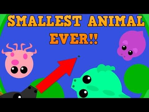 NEW MOPE.IO SMALLEST ANIMAL CHALLENGE!! // Part 1 // Mini Stingray vs Dragons