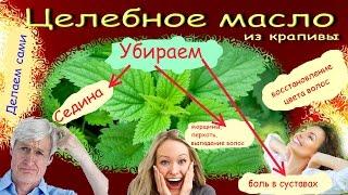 видео Крапива для волос: отвар, настойка, масло