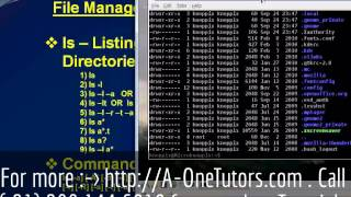 ls Command In UNIX