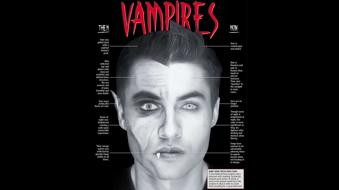 are vampires real essay Are vampires real essays and research papers are vampires real when the word vampire is said it evokes hollywood images of handsome men and beautiful women, seductive creatures with fangs that lure.