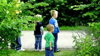 camping Lauwersoog treintje