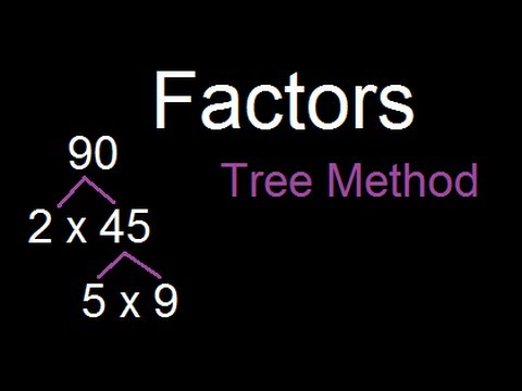 How to find all the factors of a Number - Tree method