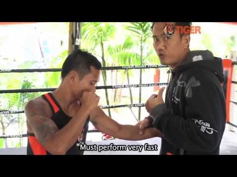 Basic Muay Thai Techniqes By Champions: Left Hook To The Body