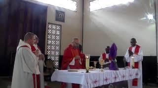 Célébration de la solennité des Rameaux du dimanche 05 avril 2020