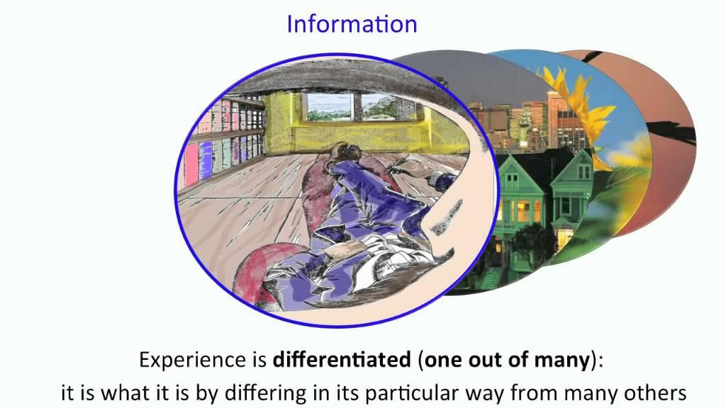 integration information