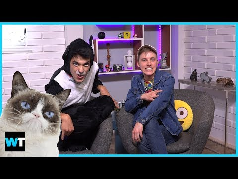 The 5 Most Rich and Famous Cats on Social Media ft. Clifton the Cat | What's Trending Now!