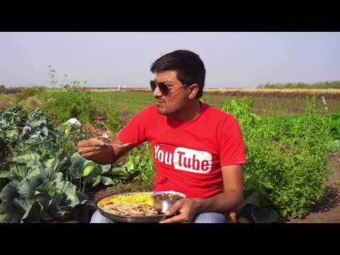 Authentic Gujarati Food Cooking In A Village | Unknown Recipes