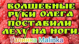 Колесниковы /Волшебные руки Олега поставили Леху  на ноги //Обзор Влогов //
