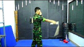 Tự luyện côn nhị khúc 01 : Hướng dẫn chi tiết động tác vụt dọc. shopdai.us