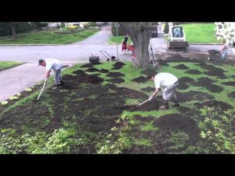 Reseeding The Lawn - Youtube