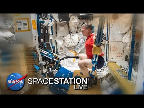 Space Station Live: The ISS Workout Plan
