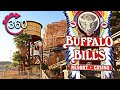 The Monorails at Primm Valley Casino Resorts - YouTube